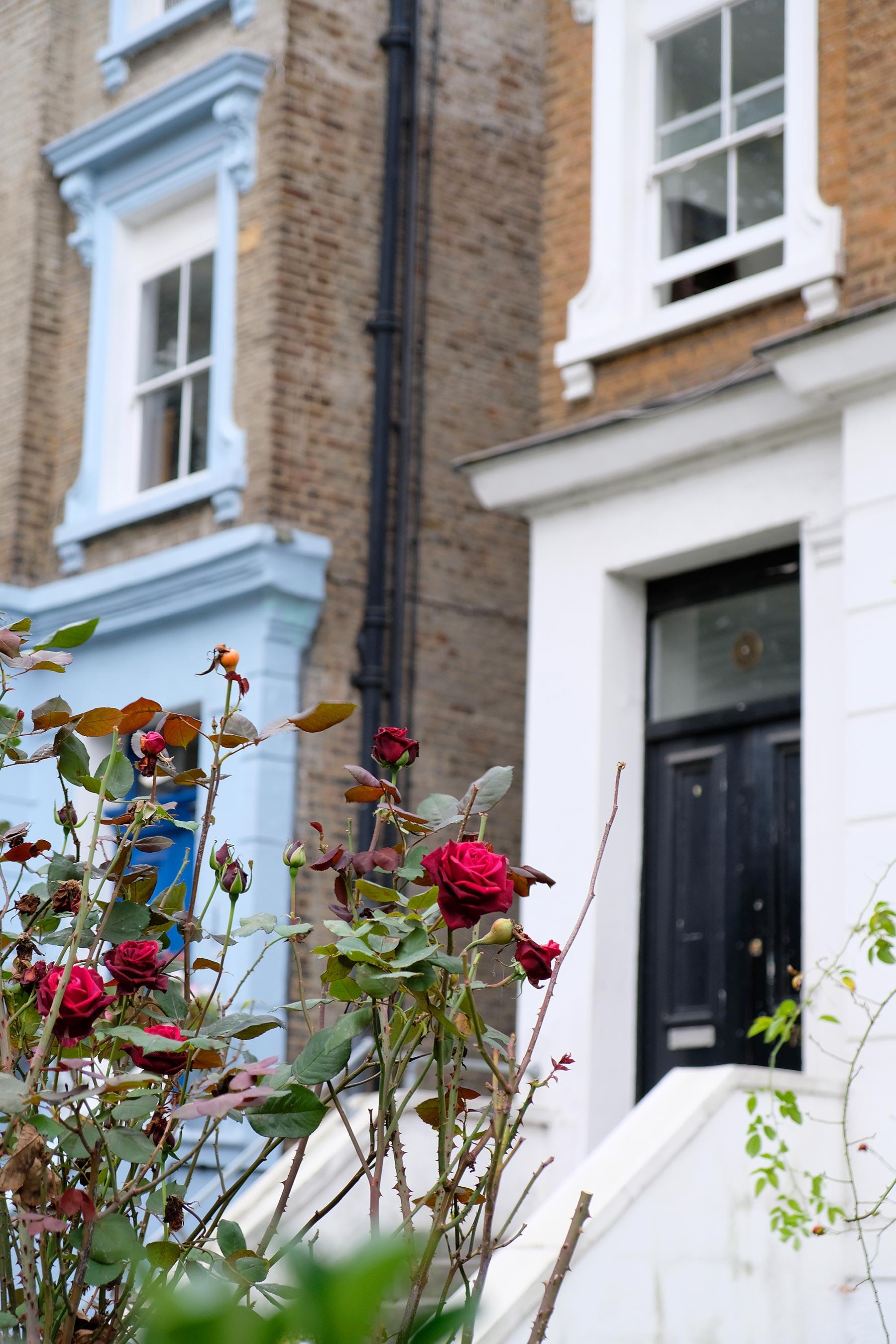 Notting hill, St Luke's mew et ses maisons colorées