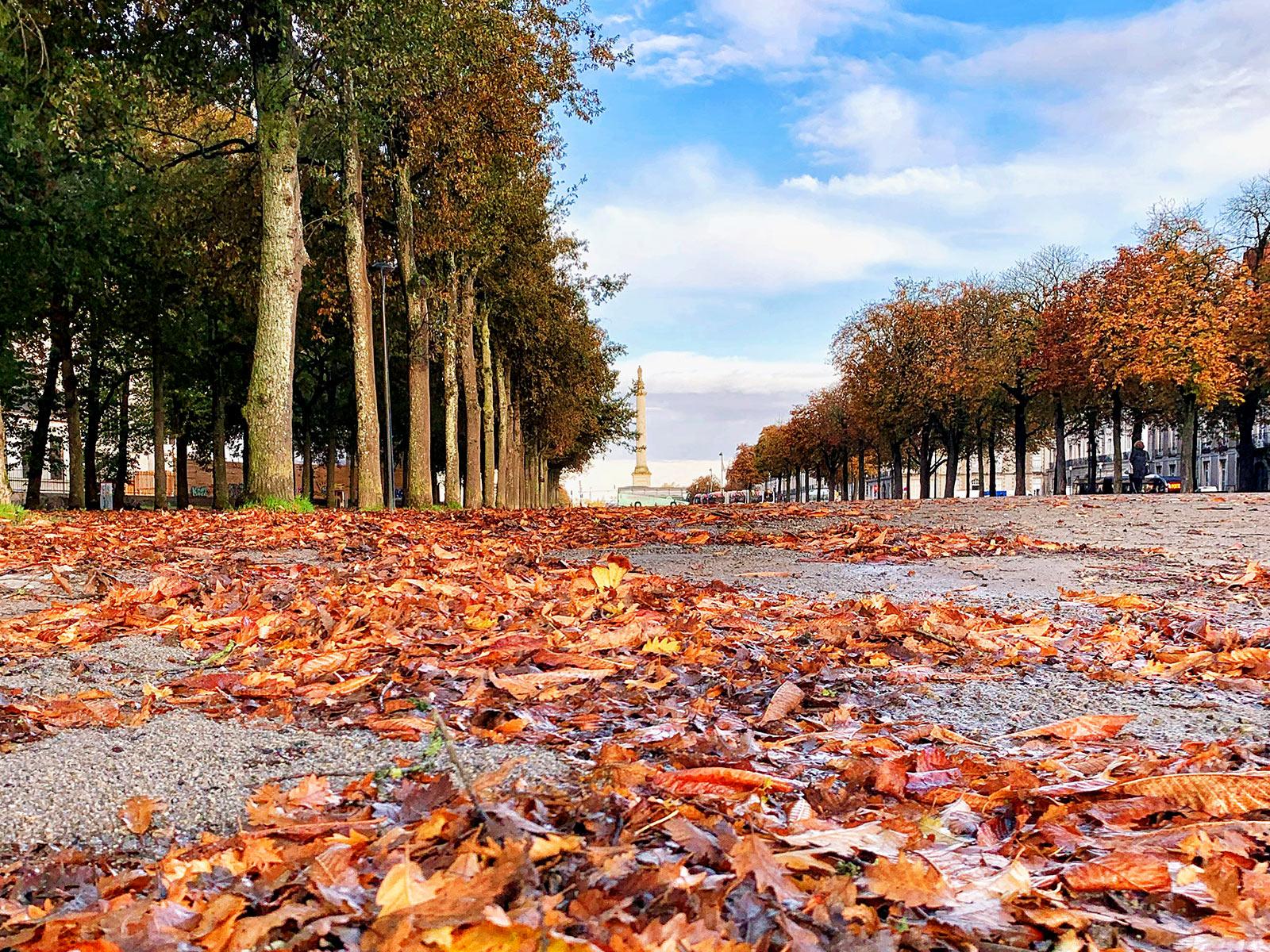 Place Foch et cours St André à Nantes en automne